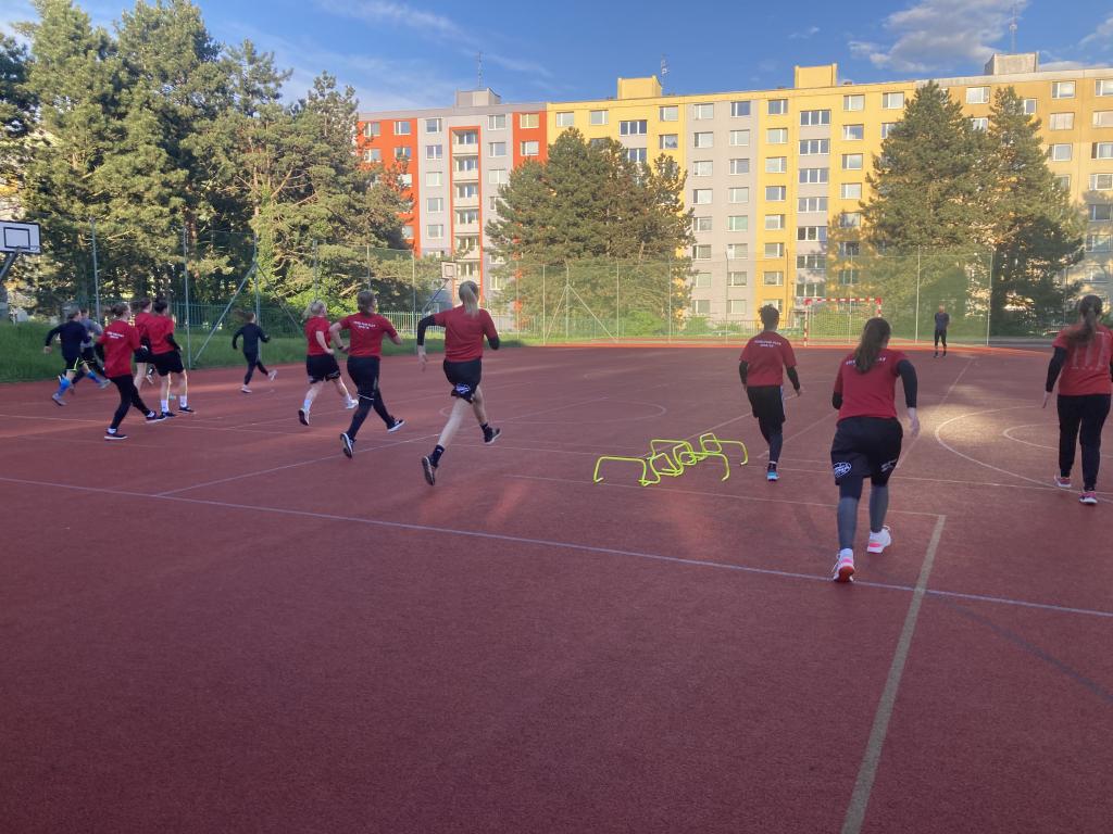 Obrázek 1: Ženský A tým na začátku letní přípravy.